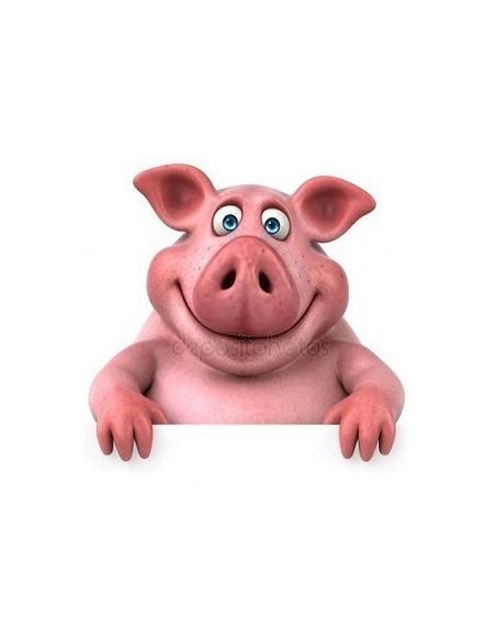 Porc seché